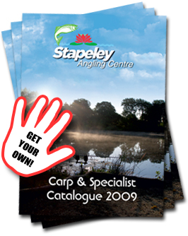 Example Large Side Ad - Contact us now