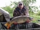 Adrian Knowless 13lbs 10oz Common Carp from turf pool using dynamite chill tuna.. mantis hook link no8 crank hook