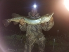 16lbs 2oz Pike from river idle. got this pike on river idle , with a full moon in the back ground..