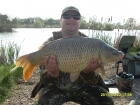 19lbs 10oz Carp from Merrington Carp Fishery using Mainline Pulse.