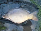 Colin Meneaud 43lbs 0oz Mirror Carp from 200 acre public lake using Carp Cuisine 'Banana creme' 18mm.. Biggest of an 18 carp catch in 26 hours.