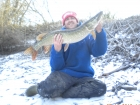 12lbs 5oz pike from local river. SNOW PIKE