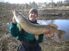 18lbs 3oz Pike from River Dee