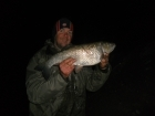5lbs 4oz Chub from River Severn. Lovely Chubly