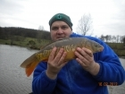 4lbs 9oz Mirror Carp from Millride Fishery using Nash Chocolate.. A small but very nice looking fish.