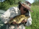 3lbs 11oz Bream from Kingfisher Lakes. Caught on multi red maggots
