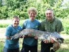 Kieron Axten 50lbs 0oz Catfish (Wels) from Etang de Cosse using Solar Club Mix (Squid & Octopus, Stimulin and Anchovy).