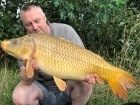 26lbs 2oz Ghost Common Carp from Syndicate