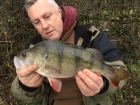 Kieron Axten 2lbs 3oz 2dr Perch from Staffs And Worcester Canal using Savage Gear.