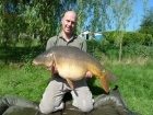 39lbs 3oz Mirror Carp from Golden Oak Lake - Angling Lines Holidays using Quest Bait  Ghurkka Spice Flouro snowman.. Caught fishing in a quiet corner of Dam under overhanging bush.