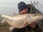 Juandita Punales Sanchez 18lbs 8oz (Comizo). comizo fishing guide in Spain. www.barbelextremadura.com facebook: barbel extremadura