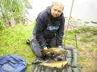 4lbs 13oz Tench from Tontine Lake. Method Feeder fished to right of stakes