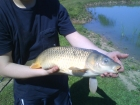 Stanton Lakes - Fishing Venue - Coarse / Carp in Stoney Stanton, England