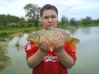 Adam Handley 5lbs 0oz Common Carp from Stanton Lakes using Co-op.