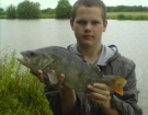 3lbs 8oz Perch from Baden Hall Fisheries. This big perch fell to 2 red maggots on a method feeder. Fishery Record.