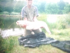 Michael Hale 27lbs 0oz cat fish from Shatterford Lakes
