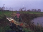 21lbs 8oz Pike from Baden Hall Fisheries