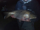 Steven Spilsbury 16lbs 2oz carp from Shatterford Lakes using dynamite baits.