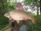24lbs 12oz Common Carp from Rookley Country Park using Carp Company Icelandic Red Cranberry & Caviar.