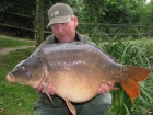 31lbs 6oz Mirror Carp from Rookley Country Park using carp company.. big scale