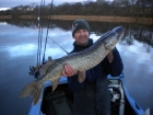19lbs 2oz Pike from Scottish Loch using Tesco.. My first fish of the day. I had only been on the water 35 minutes. Part of a 25 Pike haul in one day. Amazing Sport !!!