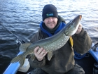 8lbs 3oz Pike from Private Loch using luce baits smelt.. Part of a 27 Pike haul in 2 days, And in My New
