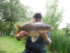 15lbs 1oz Common Carp from Private Syndicate using Mainline - New grange.