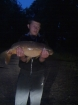 11lbs 12oz mirror carp from dilhorn fishery