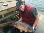 Richard Costello 14lbs 7oz Mirror Carp from Drayton Reservoir