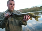 Kieron Axten 3lbs 0oz Pike from Local Club Water using Shad.. Nice few jacks in an afternoon