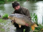 17lbs 10oz Mirror Carp from Wildwood Stock Pool